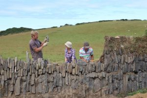 Kerdroya is about celebrating the aesthetics of distinct hedging styles from 12 Cornish locations
