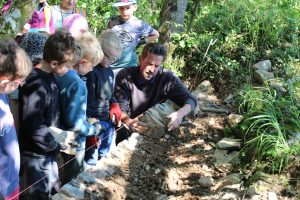 Cornish hedging classes at Tehidy